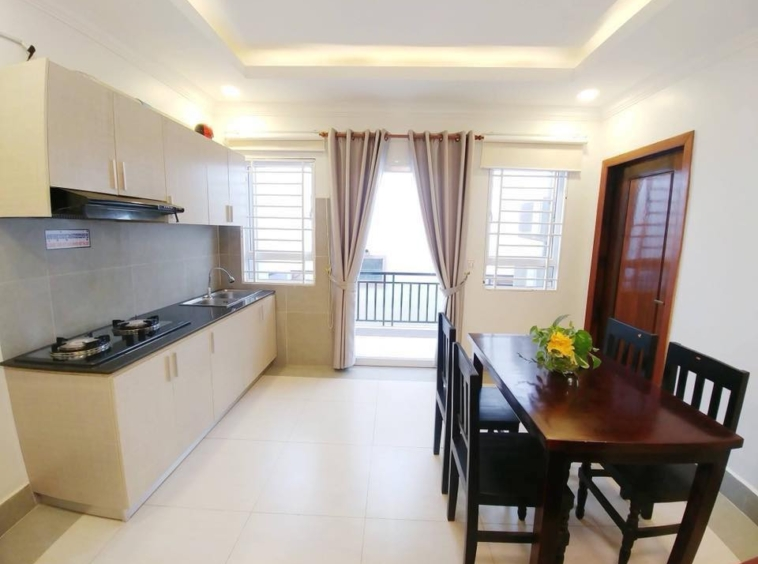 the kitchen of the 2br flat for rent in Toul Svay Prey near Toul Tom Poung and BKK3 in Phnom Penh Cambodia