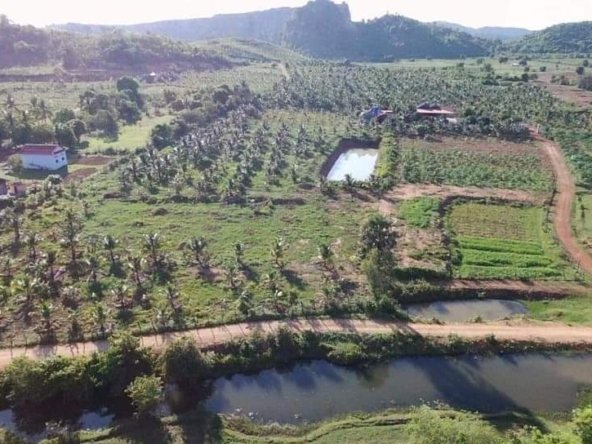 Agricultural land for sale in Prey Thnang Kampot Cambodia (7)