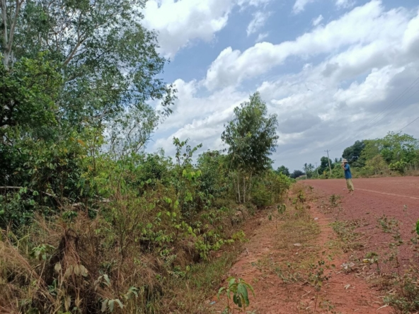 cheap land for sale in Srae Ambel Koh Kong Cambodia (3)