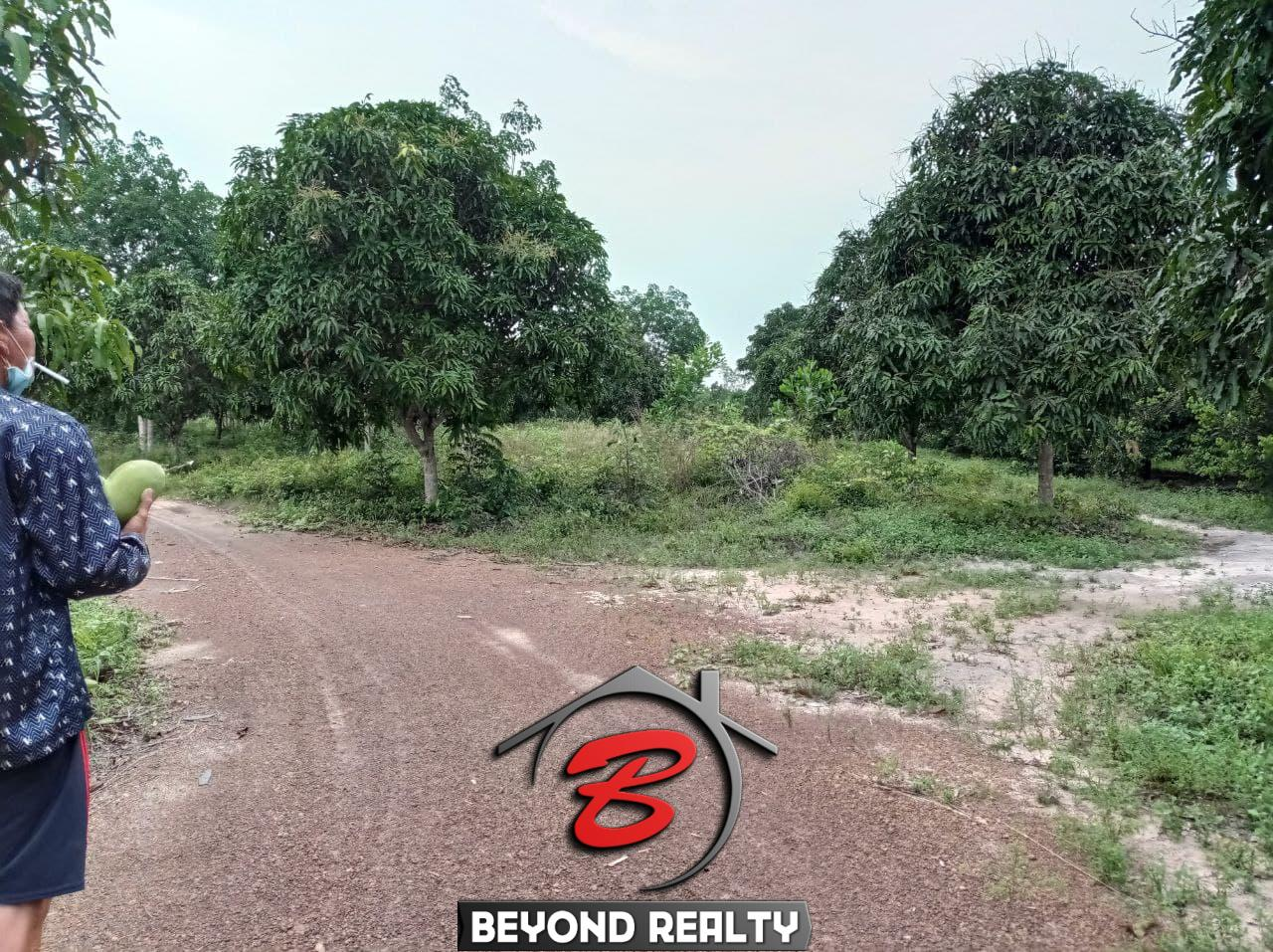 the road of the land for sale in Srae Ambel