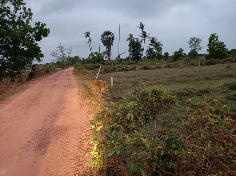 the photo of the road in front of the vacant land plot for sale in Srae Ambel