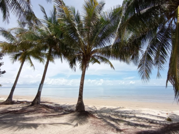beachfront land for sale in Srae Ambel Koh Kong Cambodia (1)