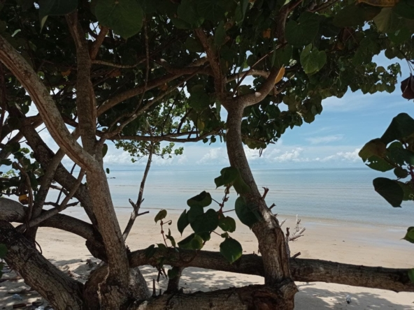 beachfront land for sale in Srae Ambel Koh Kong Cambodia (12)