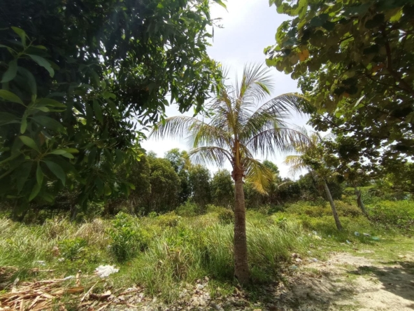 beachfront land for sale in Srae Ambel Koh Kong Cambodia (13)