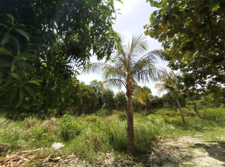 the beachfront land for sale in Srae Ambel Koh Kong Cambodia