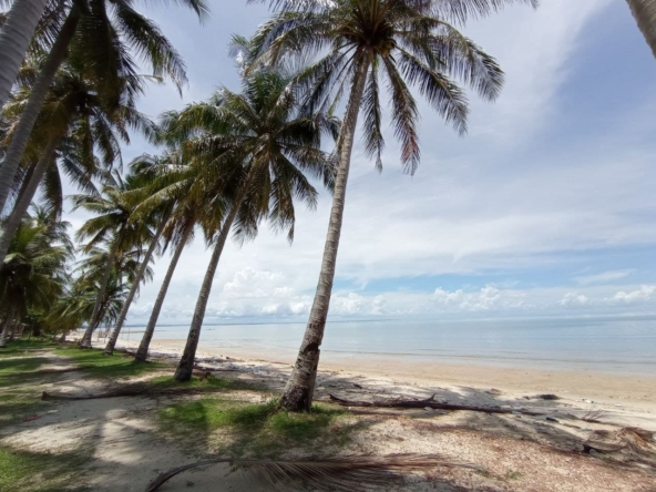 beachfront land for sale in Srae Ambel Koh Kong Cambodia (2)