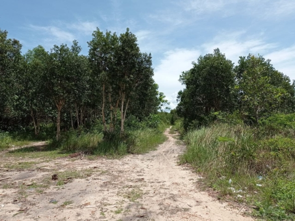 beachfront land for sale in Srae Ambel Koh Kong Cambodia (8)